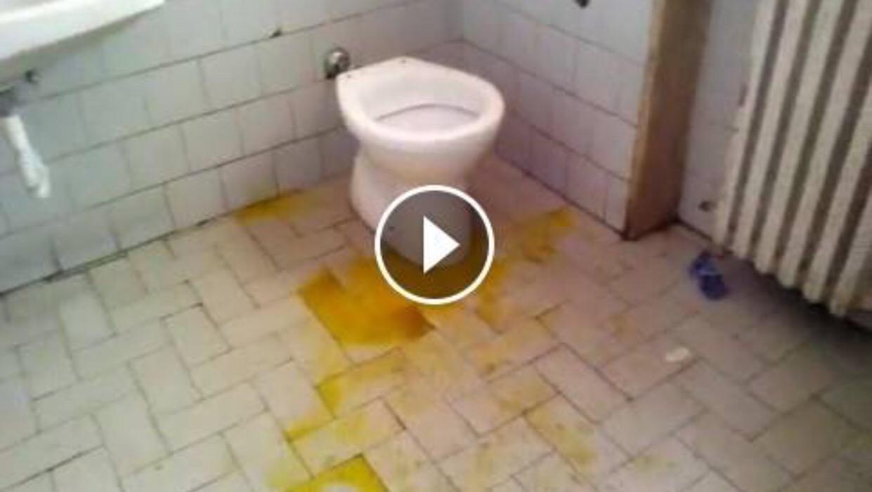 Salerno Bagni Nel Degrado In Un Reparto Del Ruggi Video Choc Su
