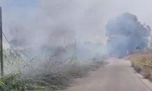 http://www.salernonotizie.net/wp-content/uploads/2018/08/incendio1.jpg