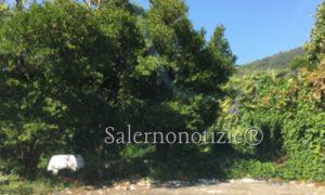 http://www.salernonotizie.net/wp-content/uploads/2018/09/img_0036.jpg